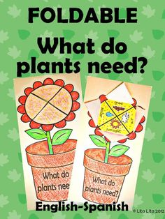 Learning in Spain: What do plants need?