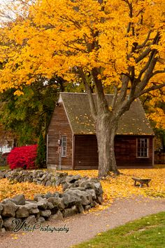 fall-foliage-over-building-in Saugus MA at the Saugus Iron works. Well worth a trip in the 2nd to 3rd week of Oct