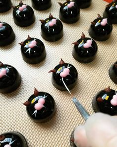 EC grad Giorgio Demarini of Roselen Chocolatier creates a black cat army for Halloween! Look at the precision and craftsmanship that he puts into each piece!