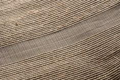 Handwoven textile in plantain fiber and acrylic Hand Weaving, Art Pieces, Fiber, Textiles, Traditional, Hand Knitting, Artworks, Low Fiber Foods, Art Work
