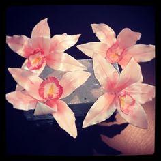 Nog eentje dan #orchideeën Plants, Plant, Planting, Planets