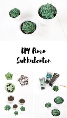 DIY Sukkulenten aus Fimo DIY succulents made from polymer clay – perfect for bathrooms without windows Diy Fimo, Fimo Clay, Polymer Clay Projects, Polymer Clay Jewelry, Diy Tumblr, Diy Blog, Ceramic Jewelry, Succulents Diy, Diy Organization