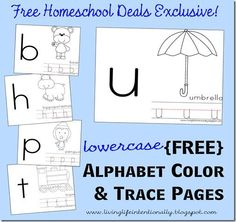 Free Lowercase Alphabet Color and Trace Pages