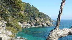 Le «Jardin marin», dans la baie du Figuier, est le 11e paysage du domaine du Rayol.