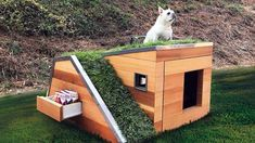 Eco-Friendly Dog House Comes With Green Roof, Water Sprout, Solar-Powered Fan Modern Dog Houses, Cool Dog Houses, Pet Houses, Puppy Obedience Training, Basic Dog Training, Training Dogs, Solar Powered Fan, Dog Milk, Positive Dog Training