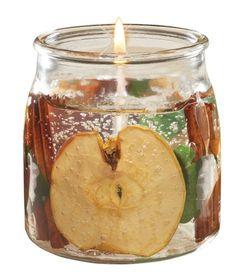 Langley Apple Cinnamon 16 ounce Gel Candle