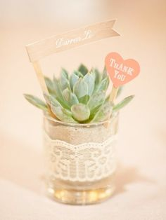 succulent wedding favour // brides of adelaide magazine