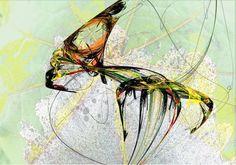 """Mi fourmi, mi moustique"". 2011"