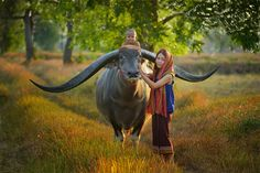 Farmer Family With Buffalo, Thailand Photography By: Saravut Whanset