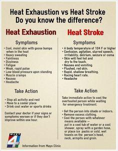 Heat Exhaustion vs. Heat Stroke