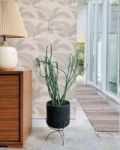 Habita   Emily Wong (@habitawallpaper) • Instagram photos and videos Modern Design, Hand Painted, Photo And Video, Wallpaper, Videos, Plants, Photos, Painting, Instagram