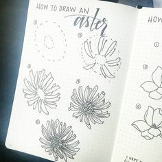 On our flight home, I threw together a quick tutorial on how to draw an Aster, which I *think* is one of the September birth flowers. Start by bonjournal_ Simple Flower Drawing, Flower Drawing Tutorials, Simple Line Drawings, Flower Sketches, Floral Drawing, Flower Tutorial, Art Tutorials, Flower Drawings, Dress Sketches