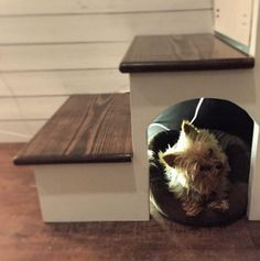 Adorable space saver for your tiny house- and your tiny pooch!!