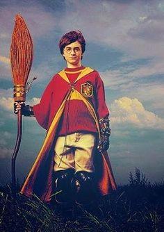Hogwarts Alumni: Harry Plays Quidditch