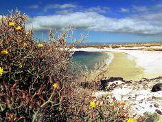 Fuerteventura - El Cotillo Playa Los Lagos