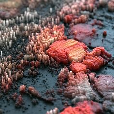 Feast Your Eyes On These Macroscopic 3D Topographies | The Creators Project
