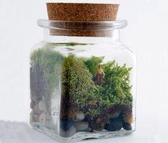 a little jar of earth