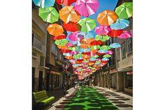 空には満開の傘!2012年の7月にポルトガルのアゲダという街で撮られたこれらの写真を撮影したのはPatrícia Almeida...