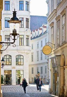 Merisi's Vienna for Beginners