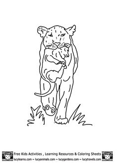 Lion Coloring Sheets of Lioness with Cub byCub Lion Coloring Pages