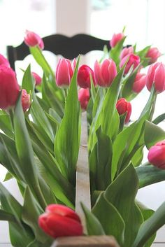I love tulips and have a wooden tool box, this is a little me and a little of my husband...amost perfect!