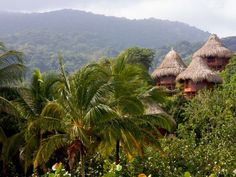 Mountainside #Ecohabs in #Tayrona national park, Colombia. A tour here is not complete without a stay at these #romantic #bungalows on the #Caribbean coast. #topdestinations #mustsee #vacation #travel