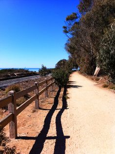 The fenced pathway runs until the point where hikers must cross the train tracks in order to follow the coastline trail to the seal sanctuary (Carpinteria, California)