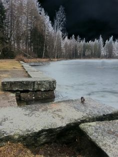 """See 50 photos and 8 tips from 635 visitors to Aulanko. """"Large forest park with pavilions and small lakes, and bear statue by Aulanko Lake - good place. Bear Statue, Small Lake, Forest Park, Finland, River, Places, Outdoor, Outdoors, Outdoor Games"""