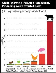 Global warming pollution released by producing your favorite foods. I feel good that I am not support the meat industry anymore! My number one reason for giving up meat was due to having compassion for ALL animals, but I also see how I was contributing a How To Become Vegan, Save Our Earth, Greenhouse Gases, Carbon Footprint, Sustainable Living, Sustainable Food, Vegan Lifestyle, Plant Based Diet, Global Warming