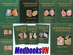 Netter Collection Of Medical Illustrations PDF (13 Books In 8 Volumes)