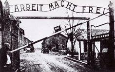 """Camera oscura.  Non ha niente a che fare con la fotografia. Le cosiddette """"cell dark"""" erano piccole stanze nel seminterrato del blocco 11 di Auschwitz, soprannominato """"il blocco della morte"""". I prigionieri che vi venivano rinchiusi passavano giorni, talvolta settimane, senza mang"""