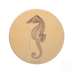 vintage_sea_horse_illustration_ornament_in_sepia_coaster-p174831777212808359en8pp_400.jpg (400×400)