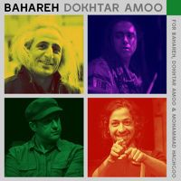 Mohsen Namjoo - Bahareh Dokhtar Amoo by MohsenNamjoo on SoundCloud