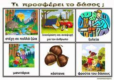 Νηπιαγωγός από τα πέντε...: δάσος Forest Theme, Trees To Plant, Activities For Kids, Safari, Kindergarten, Preschool, Education, Blog, Crafts