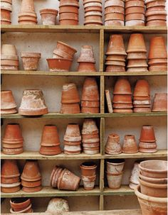 All-time classic terra cotta. The older, the better.