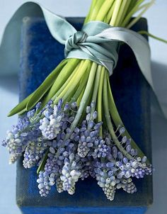 Here is a slightly softer, slightly bluer alternative to the lavender for bouquets and boutonnieres.  Or, we can add touches for a bit of blue on the tables.