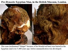 Who was in Egypt before the Pharaohs? North Africa was populated by Upper Paleolithic Man (Cro-Magnoid/Caucasoid types) beginning approximately 35,000 years ago; the complete duration of the Egyptian King's list. Here is an example of a predynastic Egyptian man.