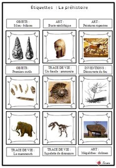 Discover recipes, home ideas, style inspiration and other ideas to try. Emc Cycle 3, Cycle 2, History For Kids, History Teachers, Science For Kids, Art For Kids, Science Tools, Science Fair, Cro Magnon