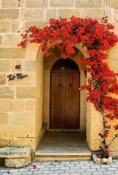 Cool Doors, Unique Doors, The Doors, Windows And Doors, Arched Front Door, House Front Door, Front Entry, Entrance Doors, Doorway