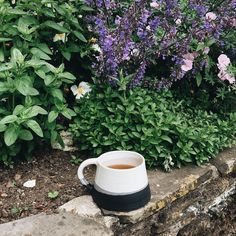 Moments by myself are rare but there are opportunities for escaping on my own every now and then. We are staying with parents at the moment and my Dad's garden is stunning so I snuck off with a mug of peppermint tea (in my beautiful new @hildacarrpottery mug) to enjoy the flowers and have a little peace and quiet  . . . #WHPgetaway #creativelife #embracethejourney #keepitsimple #wonderfulmessylife #momentsofmine #wonderfullife #momentslikethese #gratefulheart #myeverydaymagic #seekmoments…