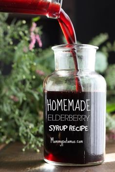 Elderberry syrup has long been used in folk medicine to boost immune function, alleviate cold and flu symptoms, and reduce sinus congestion. Here's how to make it. by AFiskie