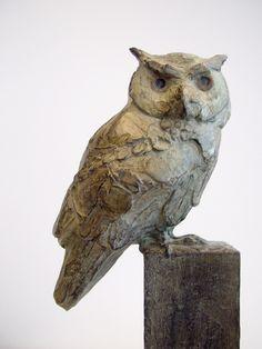 Coba Koster - Witwang owl
