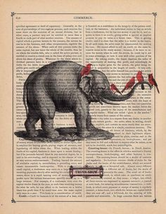 Oh it's PERFECT!!!!! The idea anyway!!! An elephant and a cardinal!!!!
