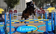Premier Equestrian now offers custom designed sponsored horse jumps. Contact us at 800-611-6109 to discuss these great advertising possibilities for your show. We will custom design a horse jump using the latest 2D and 3D cutting technology.