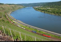 DB AG DB at Koblenz, Germany by Wayland Smith Db Ag, Train Tracks, Germany, River, Outdoor, Trains, Outdoors, Deutsch, Outdoor Games