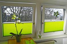 #plissee #fenster #grün Macht Euer Zuhause schöner mit unseren Plissees.