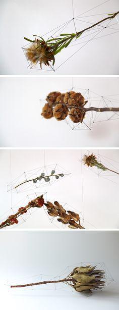 Polygon-Wrapped Floral Arrangements by Norihiko Terayama