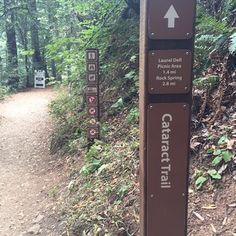 Cataract Falls Hike, Fairfax. (via Scott Listfield) This is a 3 mile round trip that starts at Alpine Lake and goes up 1300ft on what seems like a million wooden stairs. Waterfalls greet you all the way up, and it's got a lot of tree cover.
