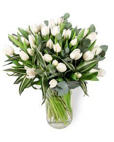 Magnolia, Deco, Flower, Plants, Products, Magnolias, Decor, Deko, Plant