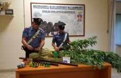 Lazio: #Cave ancora un doppio arresto per droga. Presa coppia del posto con due fucili in casa (link: http://ift.tt/2bLpSQl )